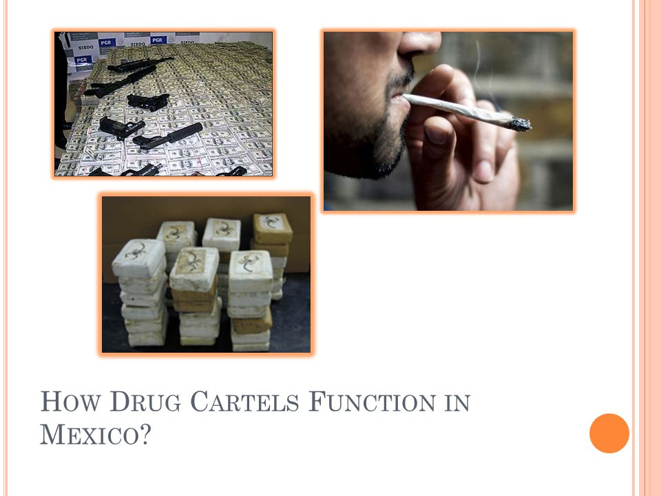 How Drug Cartels Function in Mexico