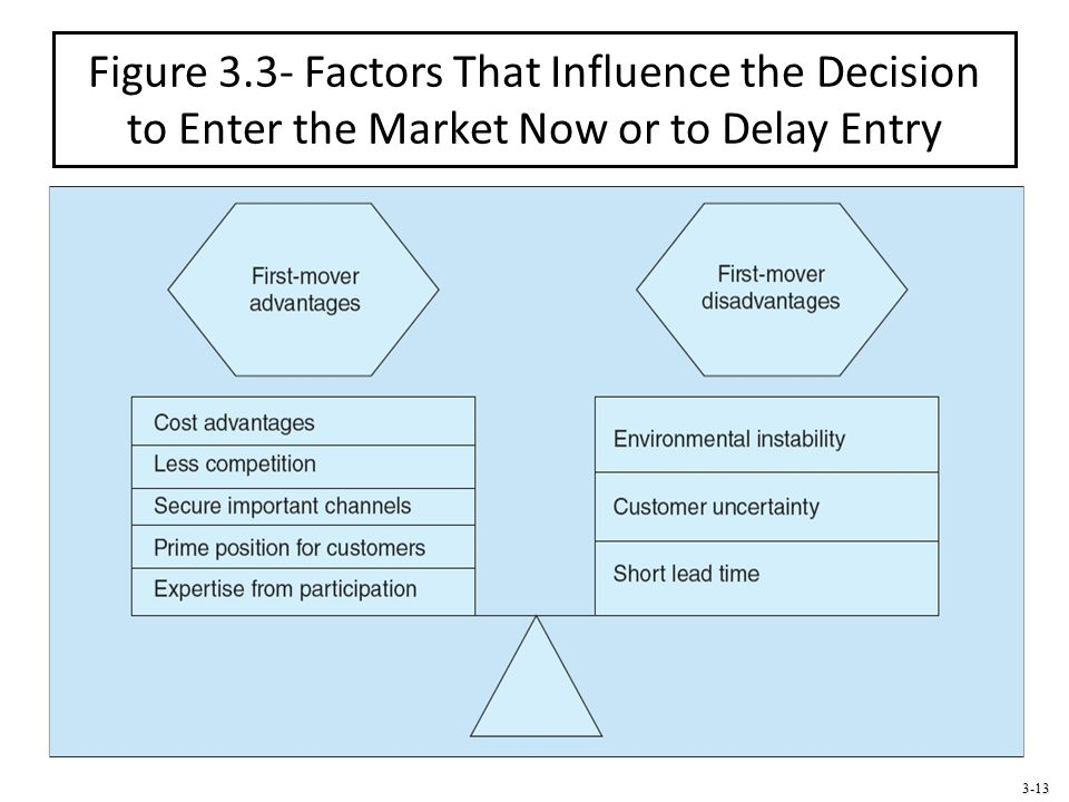 Figure 3.3- Factors That Influence the Decision to Enter the Market Now or to Delay Entry