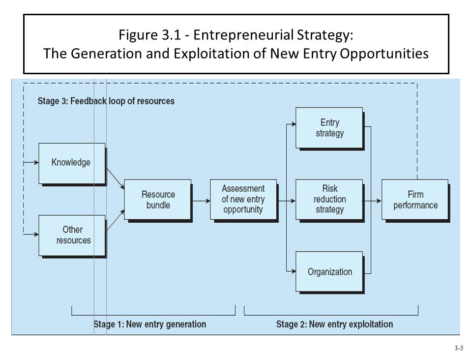 Figure 3.1 - Entrepreneurial Strategy: The Generation and Exploitation of New Entry Opportunities