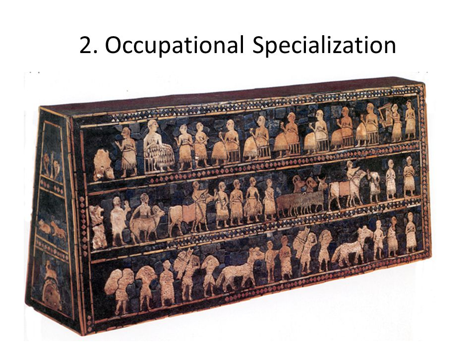 2. Occupational Specialization