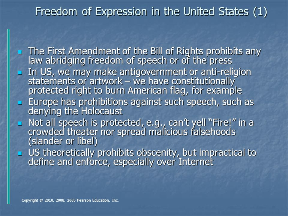 Freedom of Expression in the United States (1)