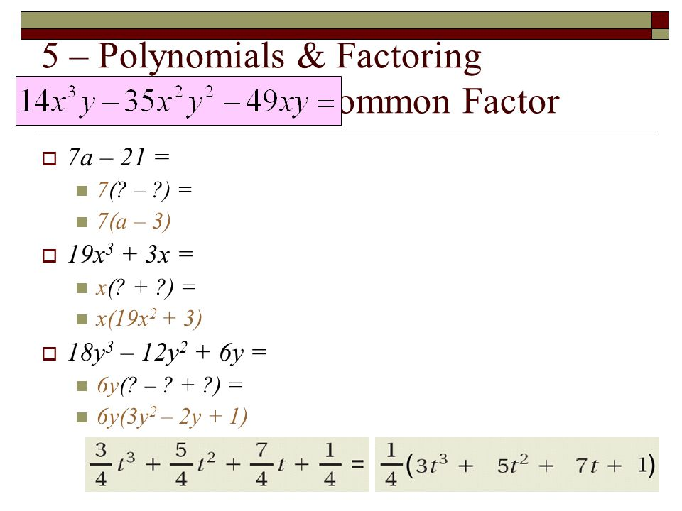 5 – Polynomials & Factoring Find the Greatest Common Factor