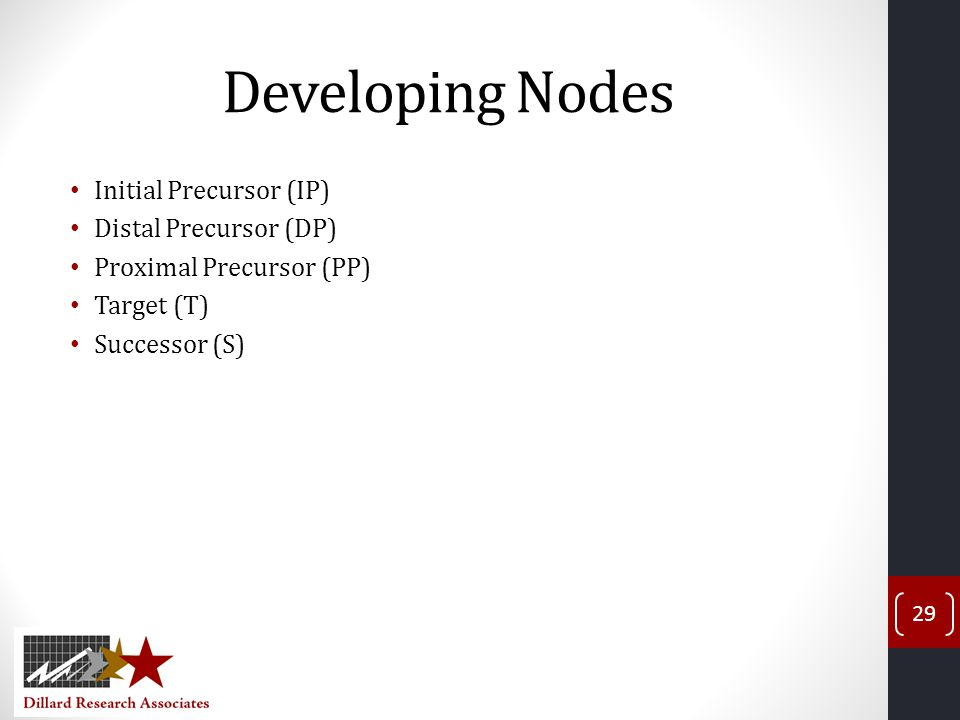 Developing Nodes Initial Precursor (IP) Distal Precursor (DP)