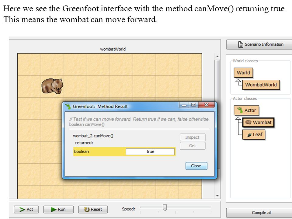 Here we see the Greenfoot interface with the method canMove() returning true.