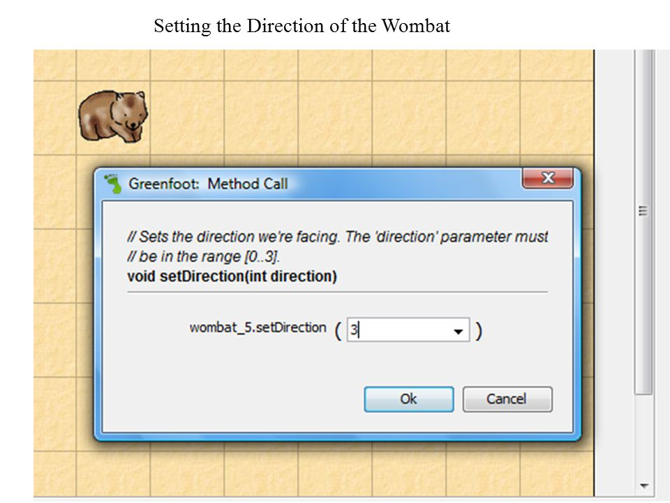 Setting the Direction of the Wombat