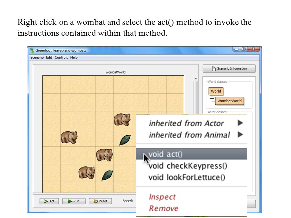Right click on a wombat and select the act() method to invoke the instructions contained within that method.