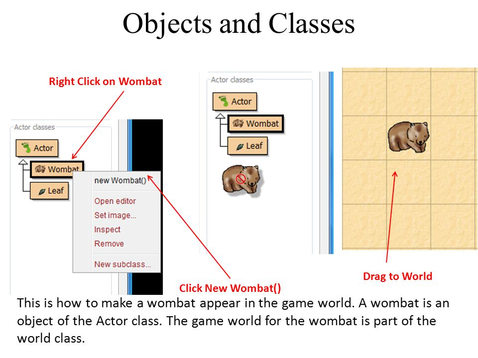 Objects and Classes Right Click on Wombat. Drag to World. Click New Wombat()