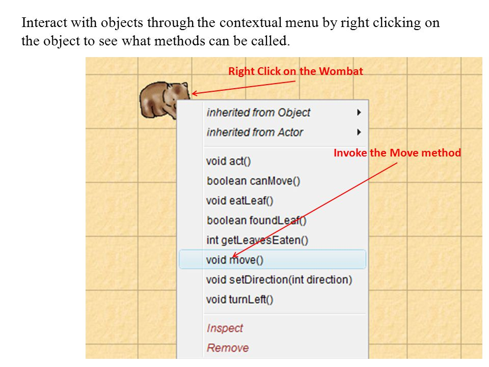 Right Click on the Wombat