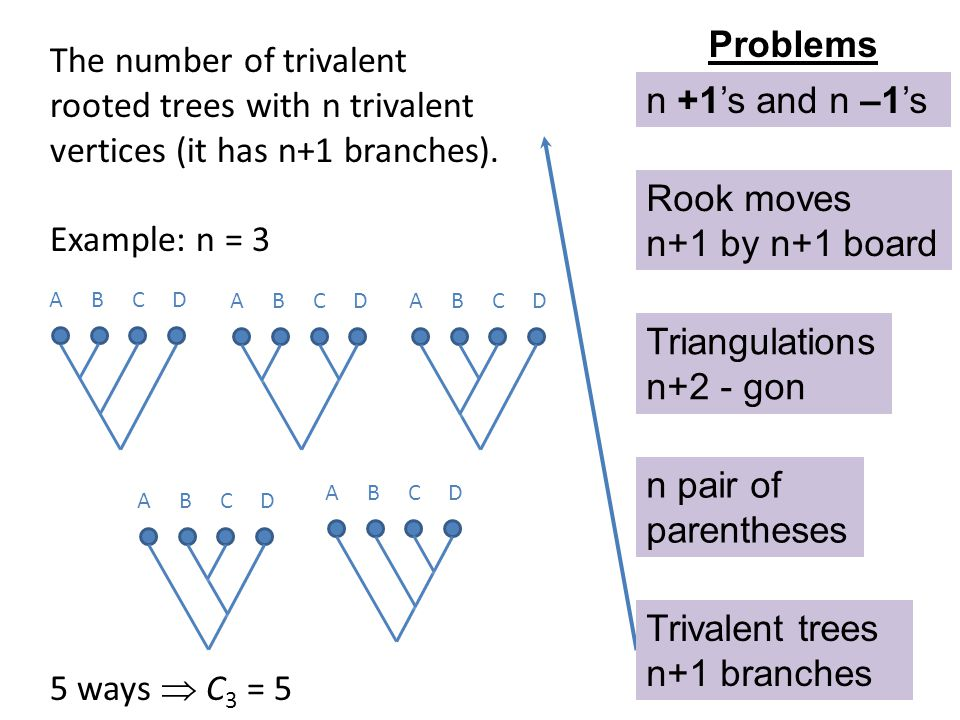 Problems The number of trivalent rooted trees with n trivalent vertices (it has n+1 branches). Example: n = 3.