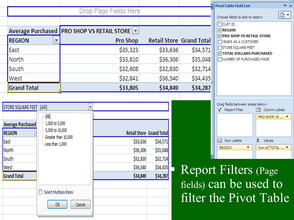 Report Filters (Page fields) can be used to filter the Pivot Table