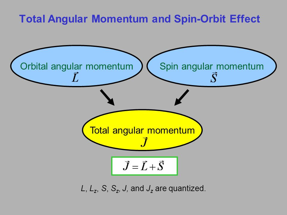 Total Angular Momentum and Spin-Orbit Effect