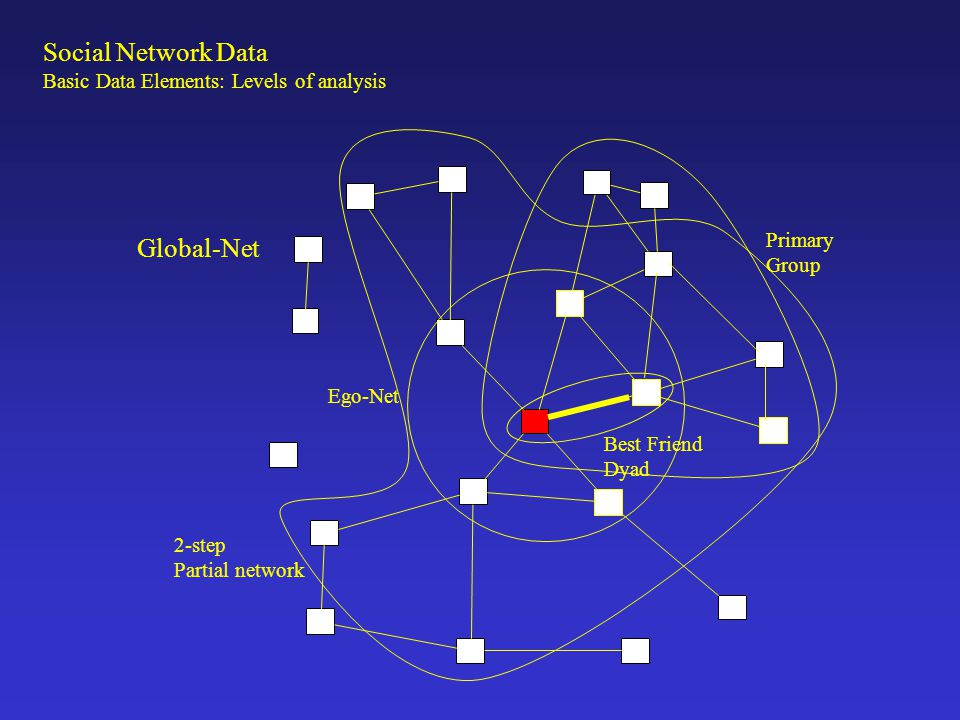 Social Network Data Global-Net Basic Data Elements: Levels of analysis