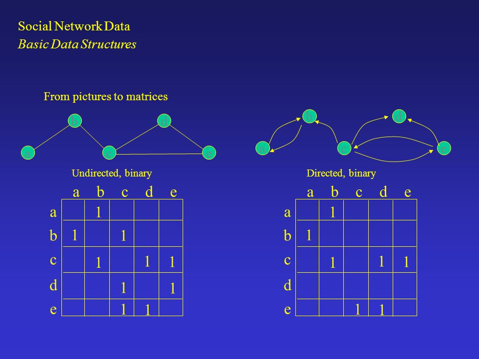 a b c d e 1 a b c d e 1 Social Network Data Basic Data Structures a b