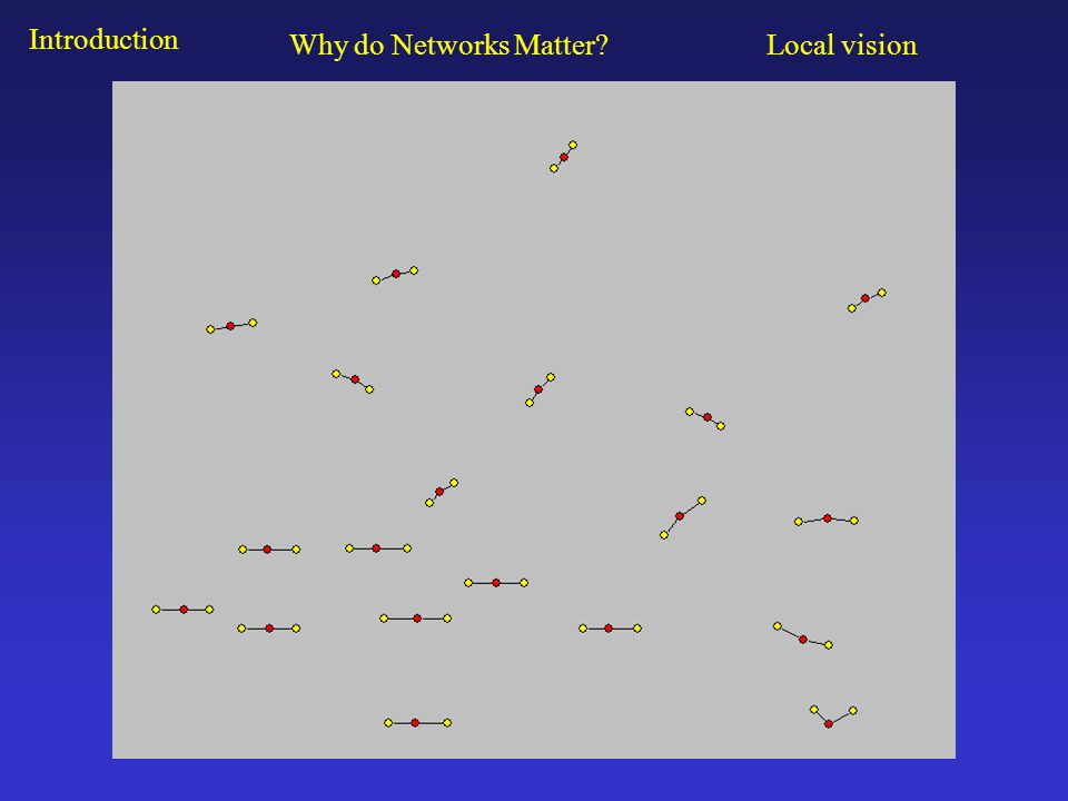 Introduction Why do Networks Matter Local vision