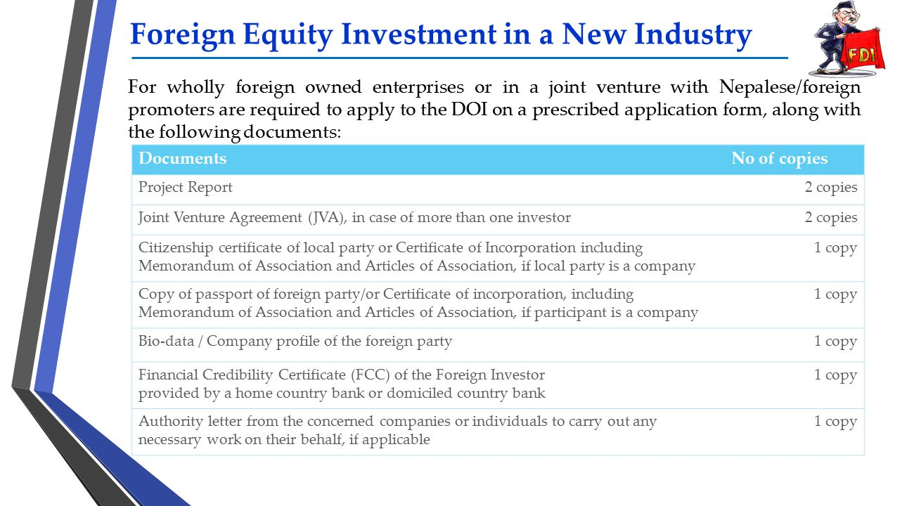 Foreign Equity Investment in a New Industry