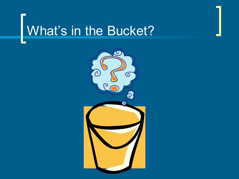 What's in the Bucket