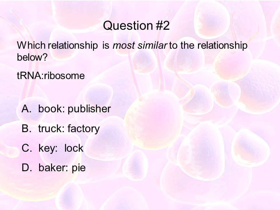 Question #2 book: publisher truck: factory key: lock baker: pie