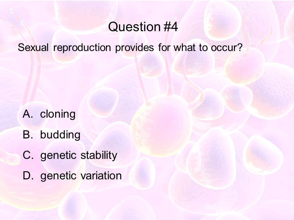 Question #4 cloning budding genetic stability genetic variation