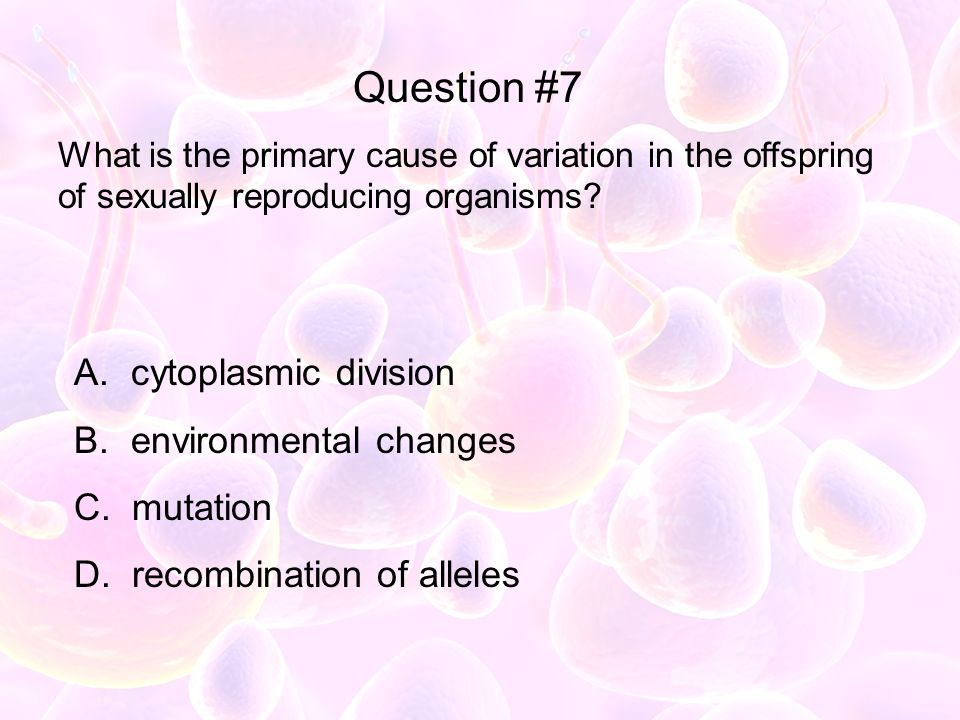 Question #7 cytoplasmic division environmental changes mutation