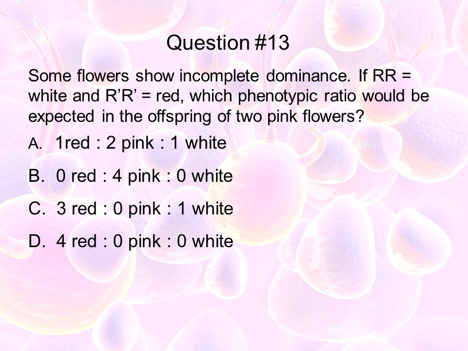 Question #13 0 red : 4 pink : 0 white 3 red : 0 pink : 1 white