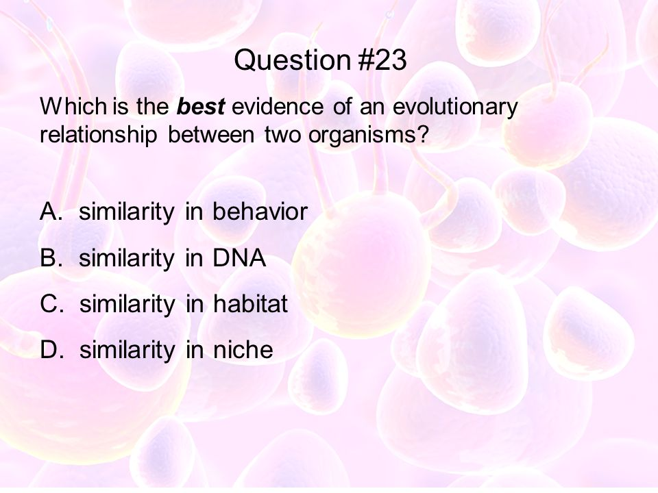Question #23 similarity in behavior similarity in DNA