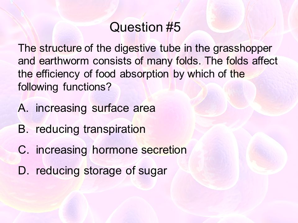 Question #5 increasing surface area reducing transpiration