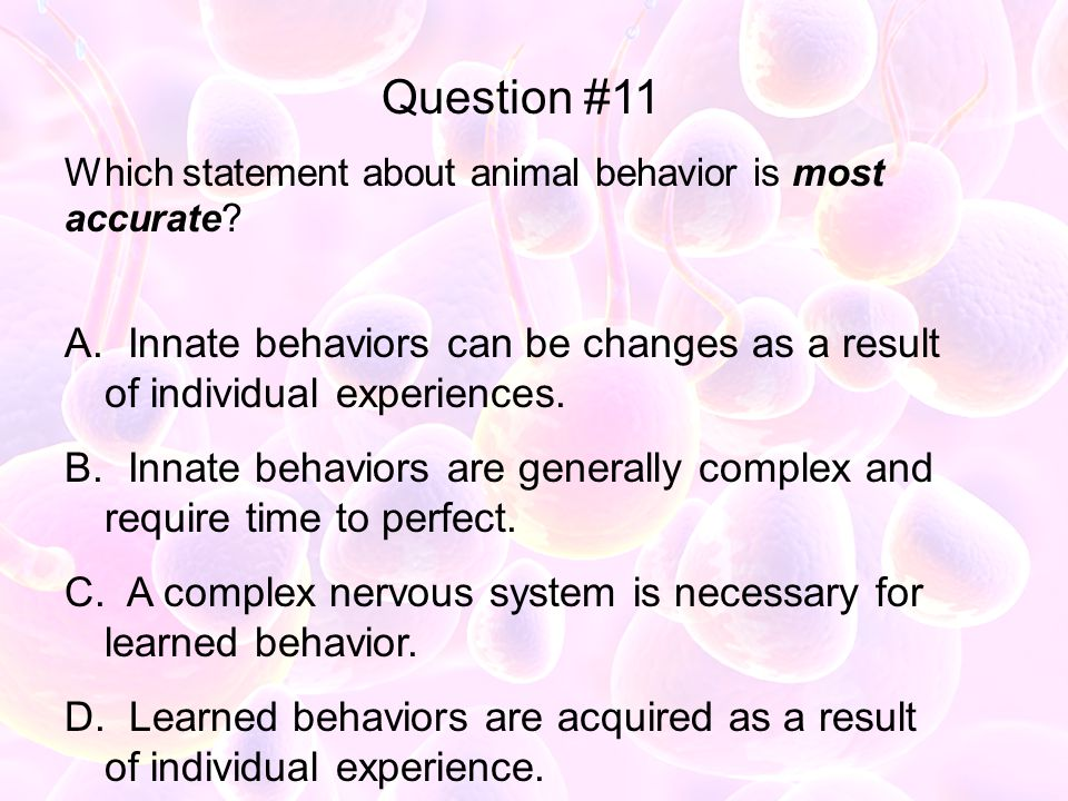 Question #11 Which statement about animal behavior is most accurate Innate behaviors can be changes as a result of individual experiences.