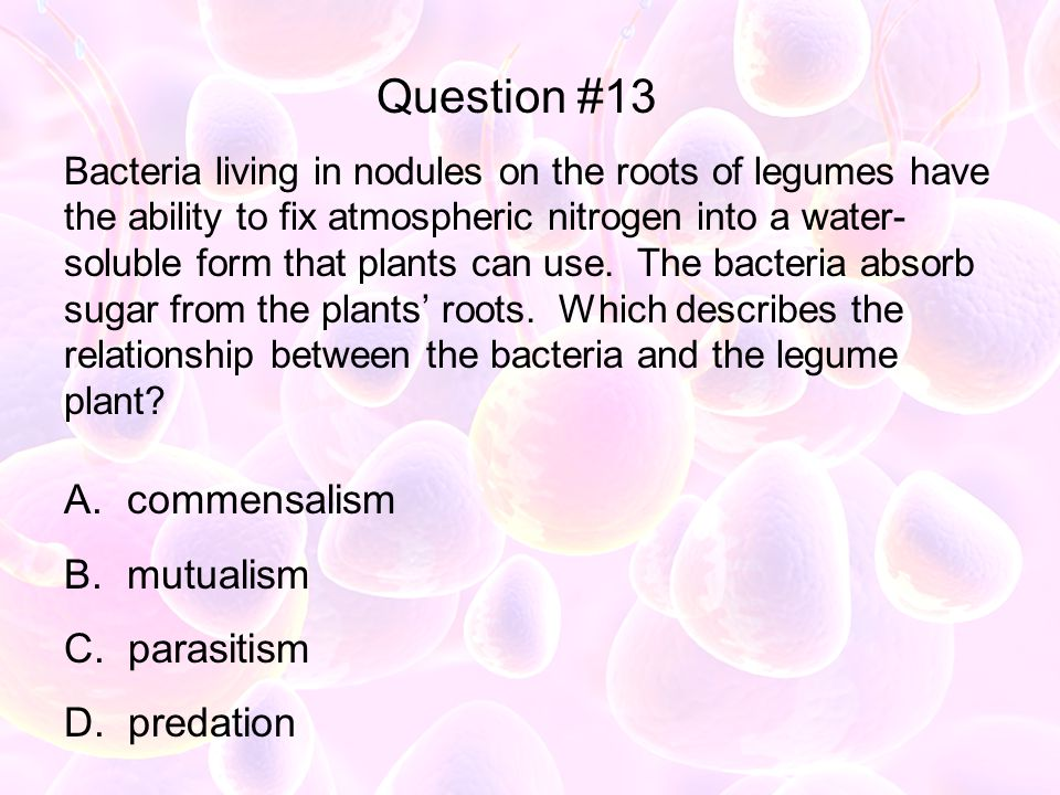 Question #13 commensalism mutualism parasitism predation