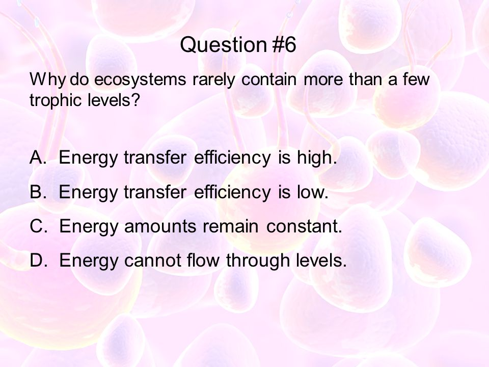 Question #6 Energy transfer efficiency is high.
