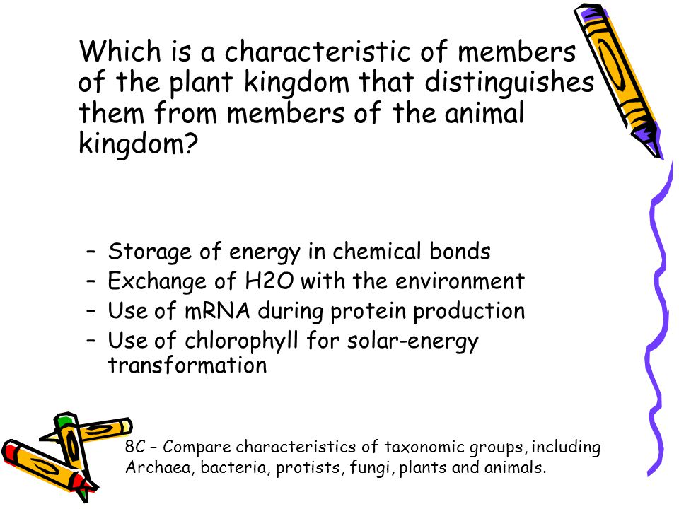 Which is a characteristic of members of the plant kingdom that distinguishes them from members of the animal kingdom