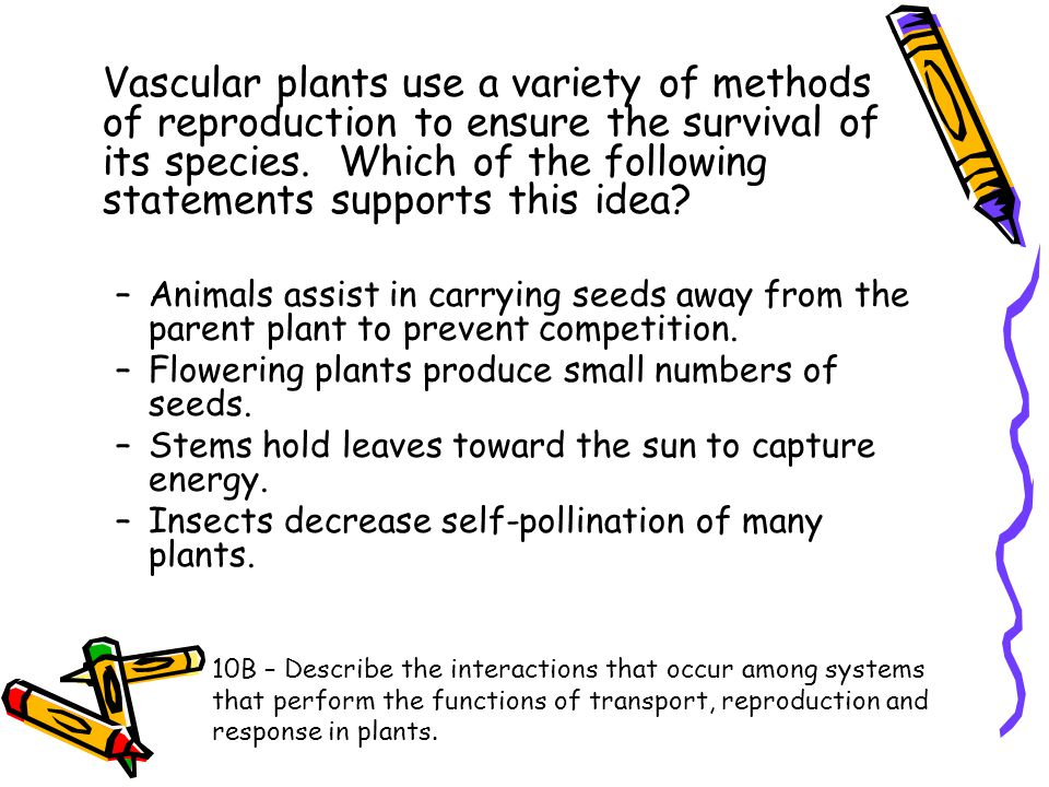 Vascular plants use a variety of methods of reproduction to ensure the survival of its species. Which of the following statements supports this idea