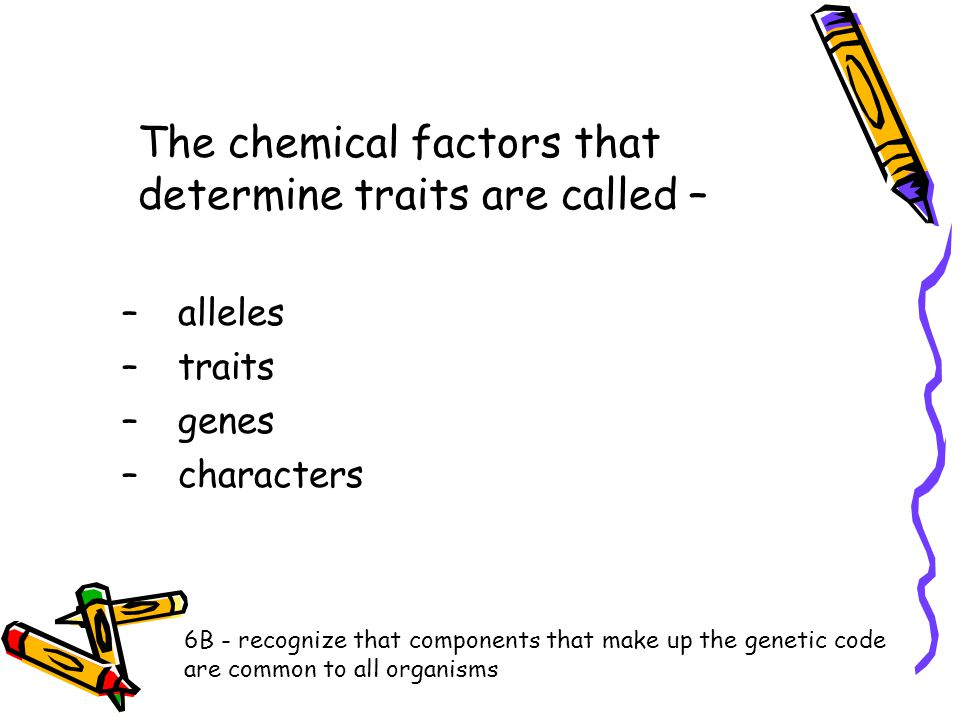 The chemical factors that determine traits are called –