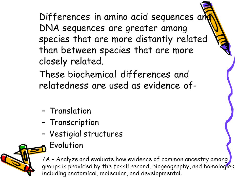 These biochemical differences and relatedness are used as evidence of-