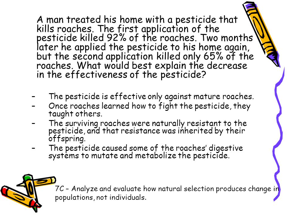A man treated his home with a pesticide that kills roaches
