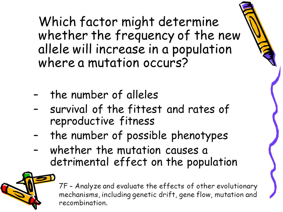 Which factor might determine whether the frequency of the new allele will increase in a population where a mutation occurs