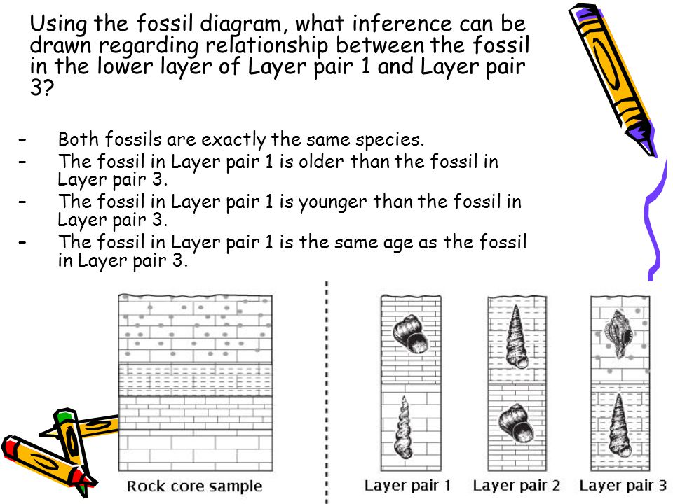 Using the fossil diagram, what inference can be drawn regarding relationship between the fossil in the lower layer of Layer pair 1 and Layer pair 3