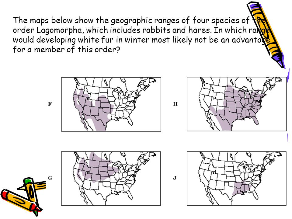 The maps below show the geographic ranges of four species of the order Lagomorpha, which includes rabbits and hares. In which range would developing white fur in winter most likely not be an advantage for a member of this order