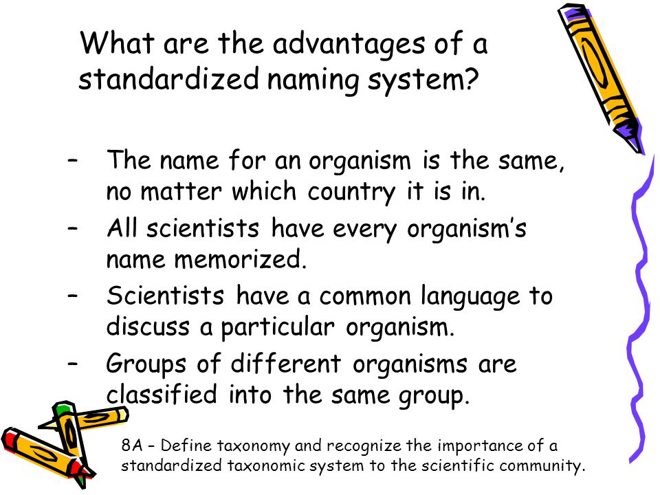 What are the advantages of a standardized naming system