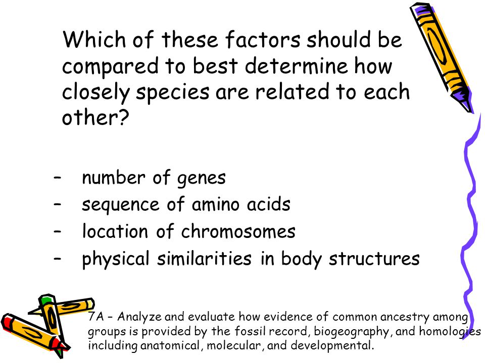 Which of these factors should be compared to best determine how closely species are related to each other