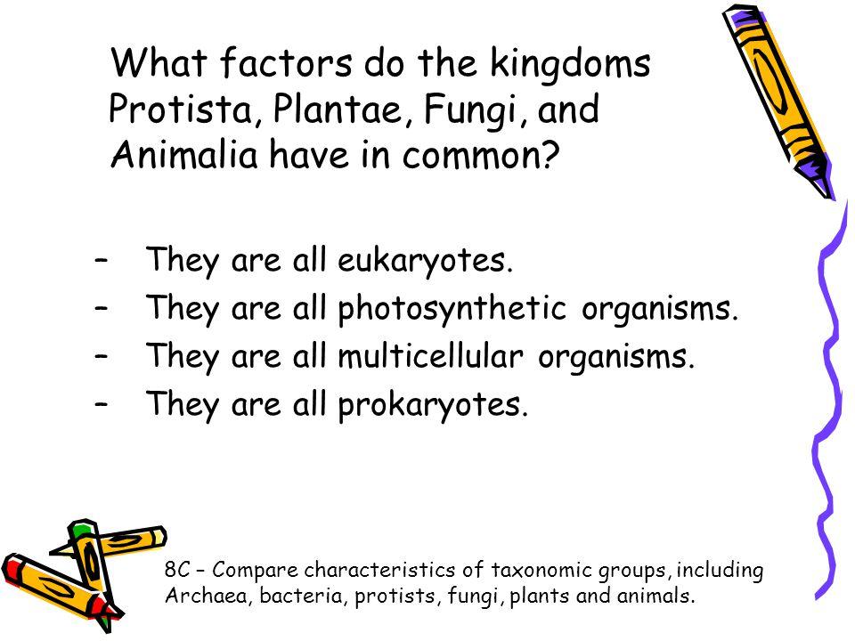 What factors do the kingdoms Protista, Plantae, Fungi, and Animalia have in common