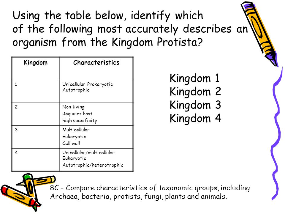 Using the table below, identify which of the following most accurately describes an organism from the Kingdom Protista