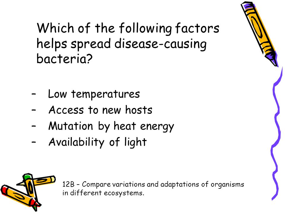 Which of the following factors helps spread disease-causing bacteria