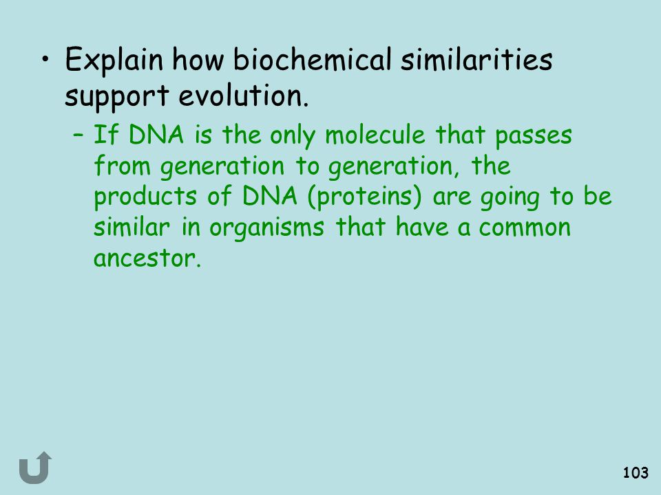 Explain how biochemical similarities support evolution.