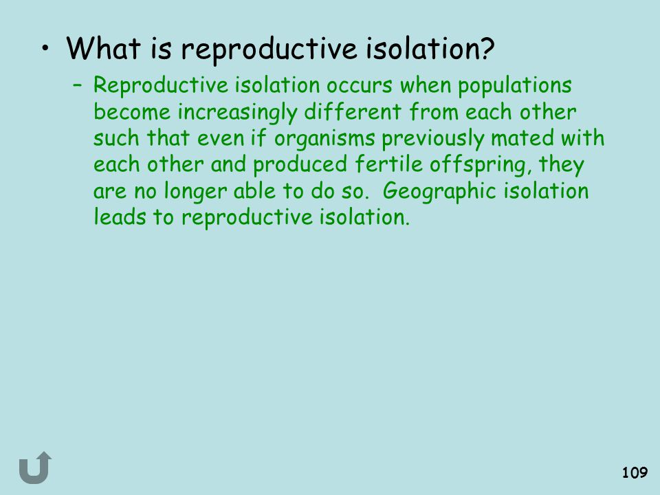 What is reproductive isolation