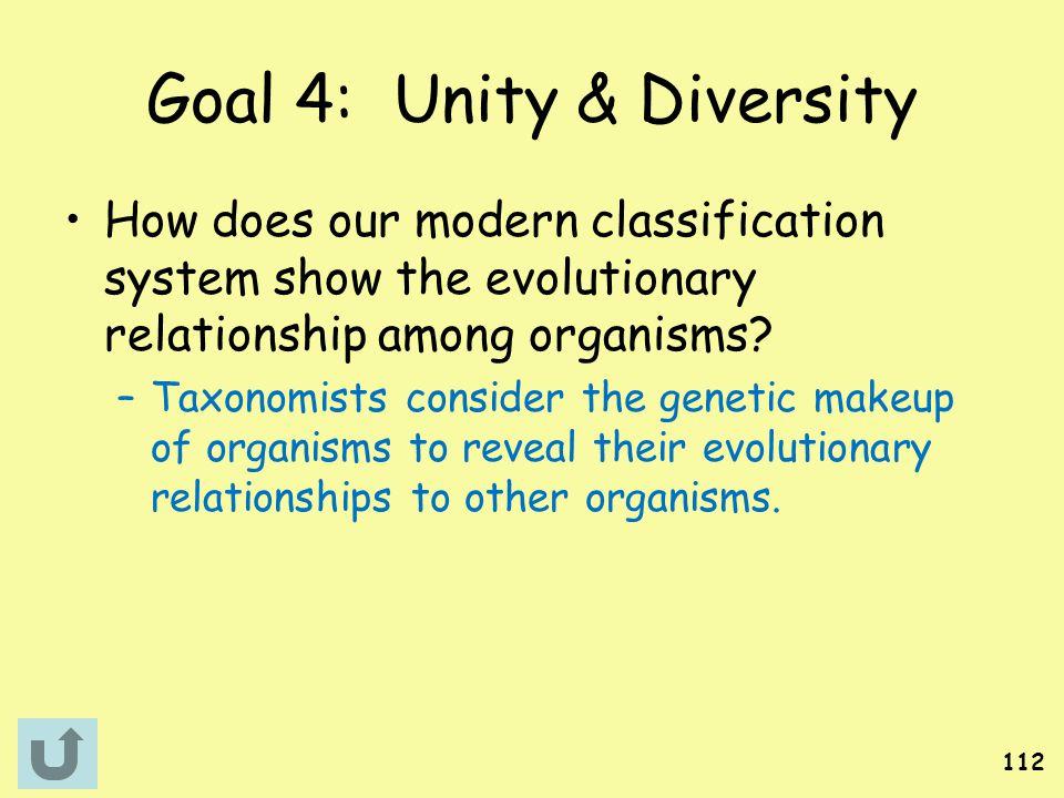 Goal 4: Unity & Diversity