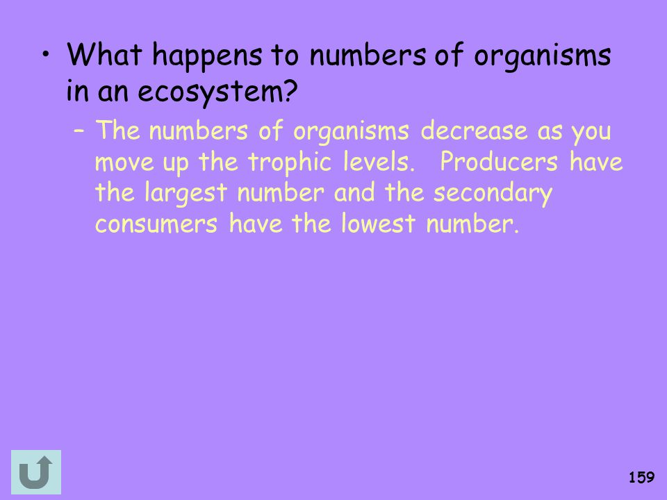 What happens to numbers of organisms in an ecosystem