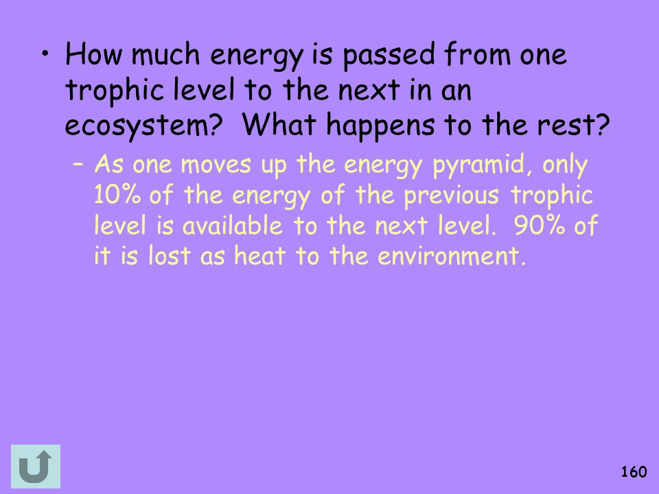 How much energy is passed from one trophic level to the next in an ecosystem What happens to the rest