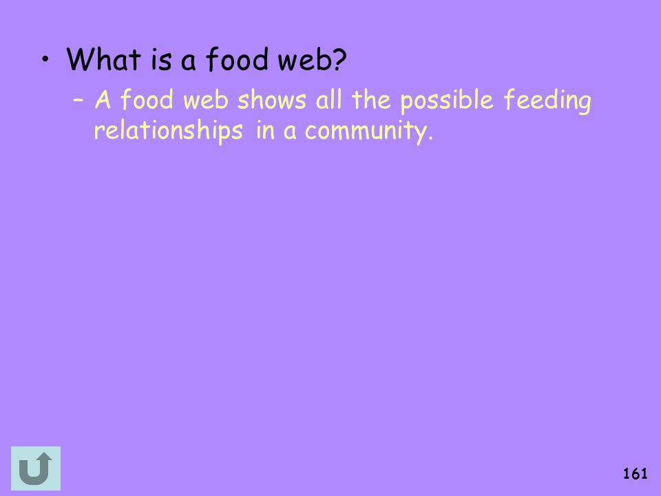 What is a food web A food web shows all the possible feeding relationships in a community.