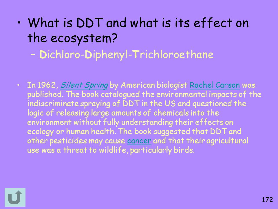 What is DDT and what is its effect on the ecosystem