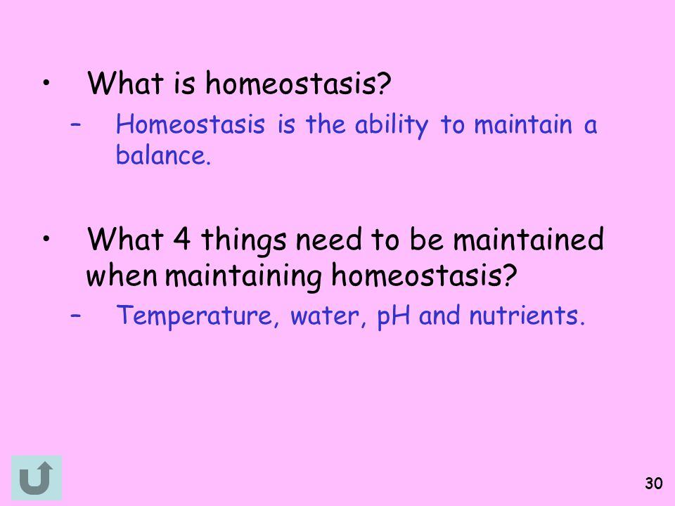 What 4 things need to be maintained when maintaining homeostasis